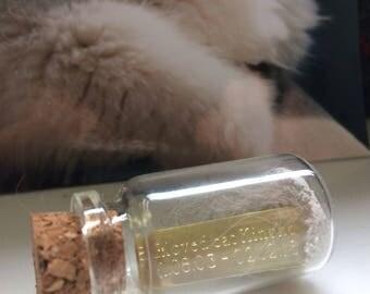 Personalised Memorial Bottle - Pet loss Gift - Memorial Gift - Ash bottle