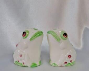 Frog Salt Pepper Shakers, Whte Green Salt Pepper Shakers, Floral Frog Shakers
