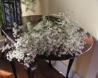 Dried Baby's Breath, Bunch of Dried Baby's Breath, Country Bunch, Long Lasting Flowers, Dried Flowers, White Flower Filler, Field Flowers