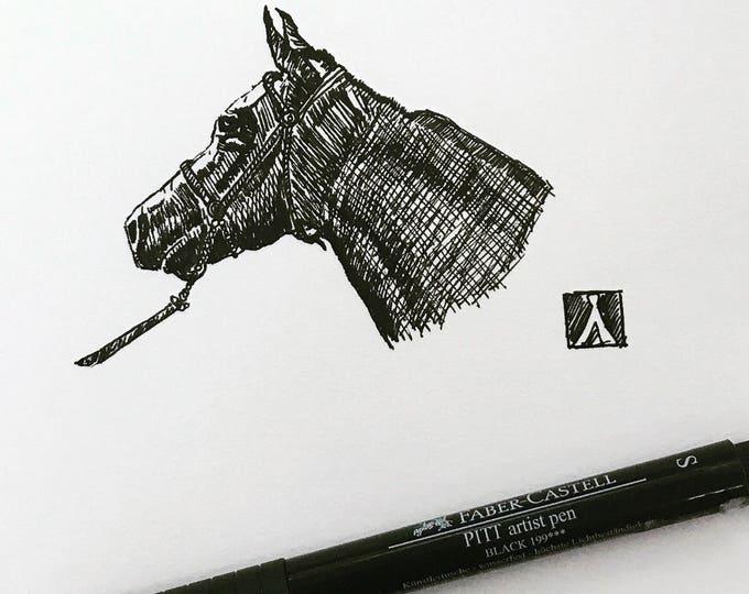 KillerBeeMoto: Original Pen Sketch of Arabian Horse Head