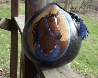 Arabian Horse in Costume Gourd Art