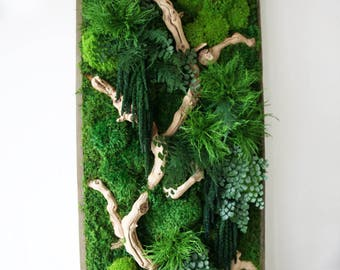 """40"""" x 18"""" Artisan Moss® Real Preserved Plants in Reclaimed Wood Frame Plant Painting®- No Care Green Moss Wall Art."""