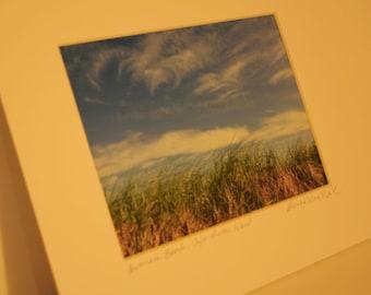 Inverness, Cape Breton Island Beach Grass, blue skies, wispy clouds, Inverness boardwalk