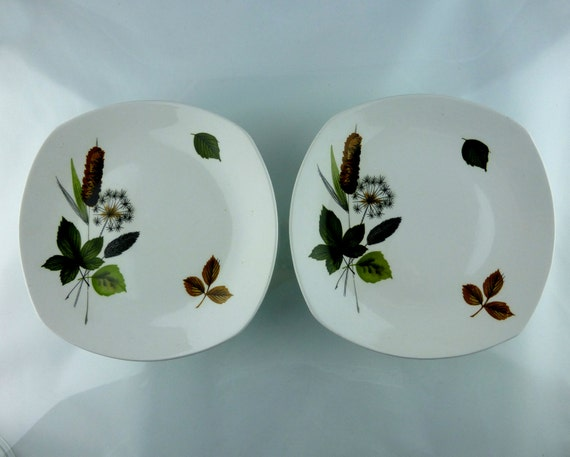 Two beautiful Midwinter Riverside side plates - vintage mid century style
