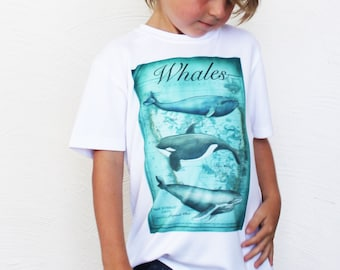 Whales T Shirt,  Boys  Size 6 Polyester Tee Shirt,  Illustrated Casual Clothing, Boys Printed Tee Shirt, Graphic Tee