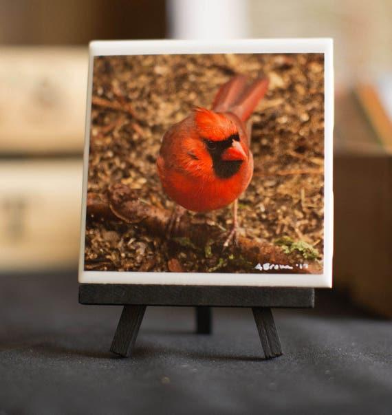 Red Cardinal Decorative Ceramic Tile 4.25 x 4.25