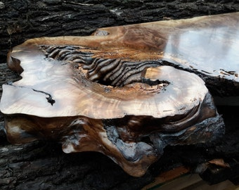 Walnut Burl Slab
