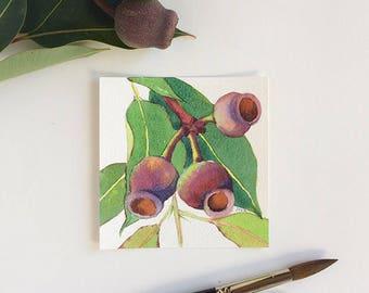 Original watercolour square artwork - gum nuts square painting - Australian flora watercolour 4x4 painting - small original painting