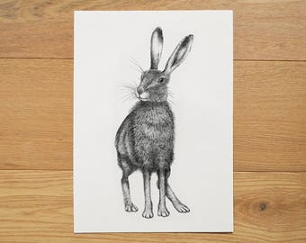 Hare illustration. Hare artwork. Black and white art. Hare print. Animal art. Wildlife illustration. Ink drawing.