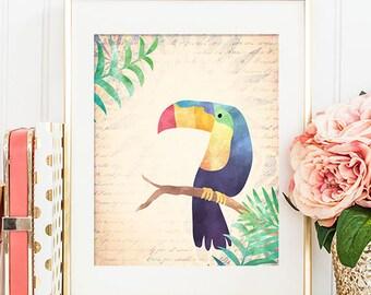 75% OFF SALE - Toucan - 8x10 Bird Art, Bird Print, Bird Artwork, Bird Art Print, Printable Wall Art, Toucan Art, Bird Wall Art, Nursery Art