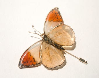 Real butterfly stick pin