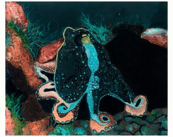 Octopus- Under the sea  / limted edtion Print.