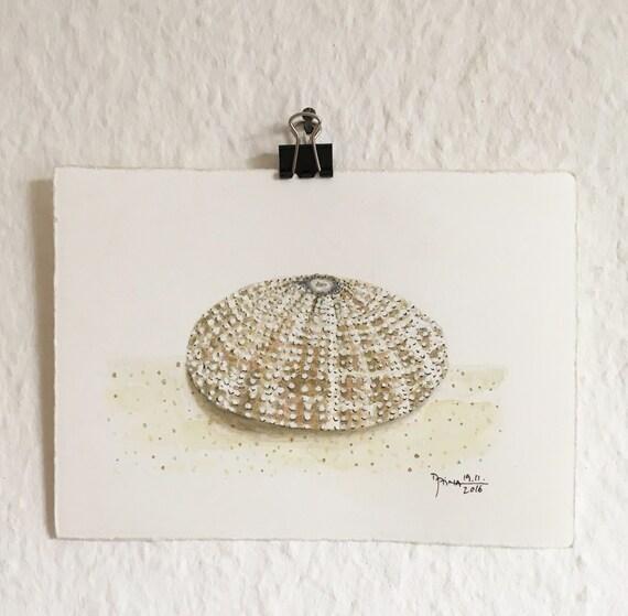 Sea Urchin Shell - Watercolor - Unique