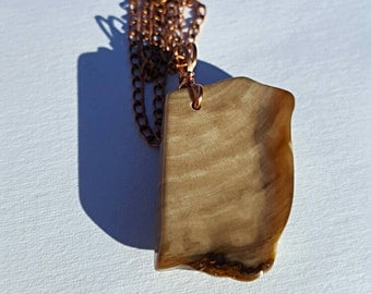 Petrified wood necklace - Natural wood fossil pendant - Hand Collected fossil Wood Pendant from British Columbia -