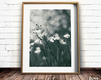 Flower Print, Printable Art, Meadow Print, Flower Meadow, Black and White photo, Black and White flowers, Instant Download, Large Print
