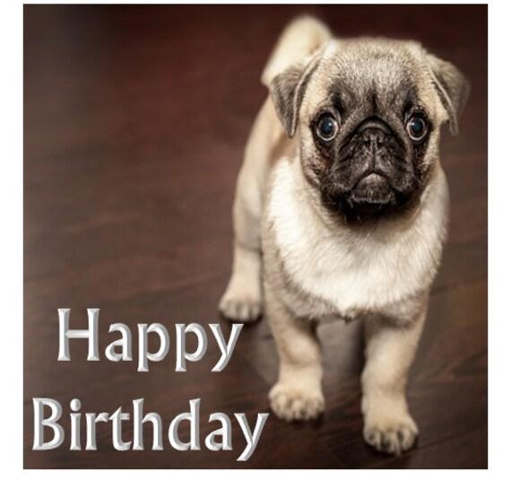 Yro Birthday Sheet Cake
