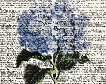 5x7 | Hydrangea | Flowers | Flower Print | Flower Picture | Bluish Hydrangea | Gifts | flower | Re-purposed Dictionary | Gift For Friend