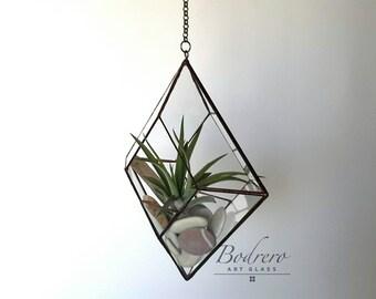 Hanging vase for Tillandsias