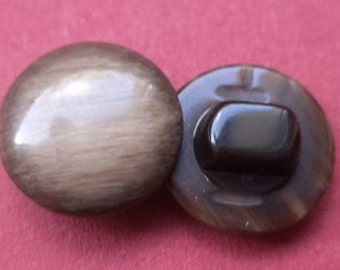 11 small brown buttons 13mm (2581) button