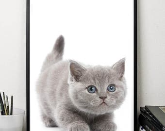 Cat print cute animals print wall art decor nursery print digital download poster 5 x7 8x10 12x16 grey white minimalist art poster