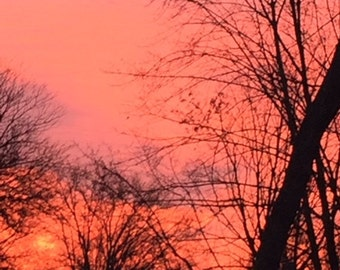 pretty in pink sunset