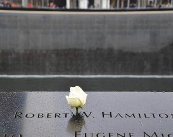 White Rose, 9/11 Memorial, Reflecting Pool, New York City