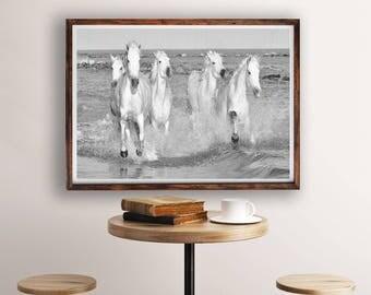 Black and White Prints, Black and White Horses Photography, Wall Art Prints, Landscape Photography, Living Room Art Print, Horses Print, Art