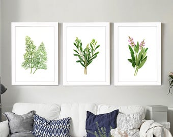 Set of 3 Herb watercolor painting prints. Dill, Tarragon, Sage paintings, Herb botanical prints, green home decor art print, kitchen decor