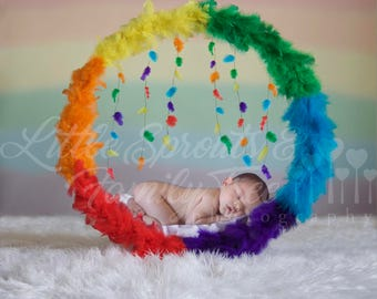 Newborn digital backdrop background rainbow baby