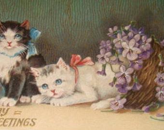 Cute Vintage Cat Postcard