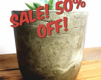 Medium Concrete Cement Planter, Cement Pot, Air plant, Succulent, Home Decor, Wedding, Perfect Gift