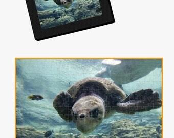 Sea Turtle Underwater Puzzle