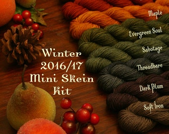 Hand Dyed Artisan Yarn, Quick Step Sock MINI Skein KIT, Multicolor Set Kettle Dyed, (Winter 2016/17)