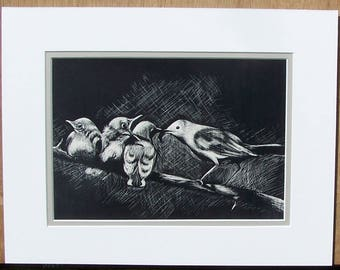 Scratchboard - Bird Art - Mother Bird with Babies - Black & White - With Mat - Fine Art - Original - Wall Art - Wildlife Art - Nursery Decor