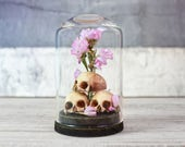 Skulls and Dried Flowers in a Miniature Glass Dome Display - Home Decor - Cabinet of Curiosities - Vanitas - 2.75 x 1.73 inches / 7 x 4,4 cm
