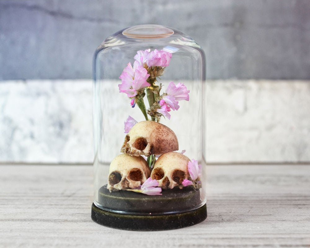 skulls and dried flowers in a miniature glass dome display