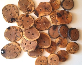 Handmade Wooden Buttons, Natural Wood Buttons, Handmade Oak Tree Branch Wood Buttons, Set of 24, 1 Inch to 1 3/4 Inches