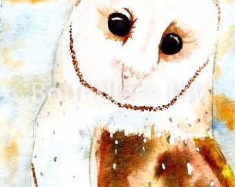 Barn Owl Art Print - Watercolor Animal Owl Painting 5x7