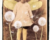 Among the Dandelions  Instant Download Vintage Photograph
