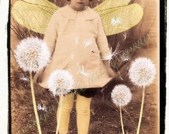 Among the Dandelions  Instant Download Vintage Photograph