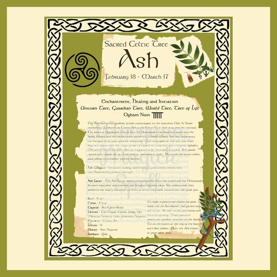 ASH CELTIC SACRED Tree -  Digital Download, Book of Shadows Page,Grimoire, Scrapbook, Spells, White Magick, Wicca, Witchcraft, Herb Magic