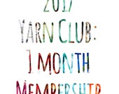 2017 Yarn Club - Surprise 1 Month Membership: April - Exclusive New Colorway - Preorder