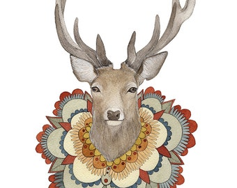 Collector: Deer // 8x10 Art Print // Woodland Illustration