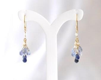 14K Gold. Multi-Color Sapphire earrings, Blue sapphire Earrings, Moonstone Earrings, September Birthstone Earrings, Gift For Her