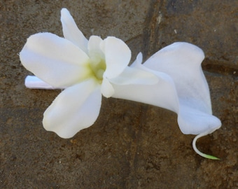 Calla lily orchid boutonniere, ivory, white calla boutonnier