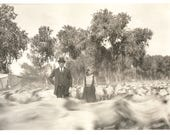 "Vintage Snapshot ""Rural America"" Sheep Blurry Motion Action Man & Daughter Found Vernacular Photo"