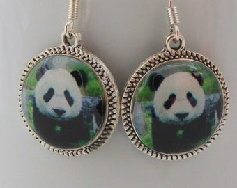 Panda Bear Animal Earrings Jewelry Character Silver Bronze Picture Round 3D Dimensional