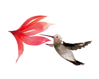 Hummingbird - Box of 10 Greeting Cards