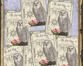Ex Libris vintage bookplate card  8x library cards with owl instant download printable digital collage sheet  EL001