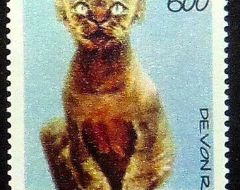 Devon Rex Cat, Italy -Handmade Framed Postage Stamp Art 20967AM